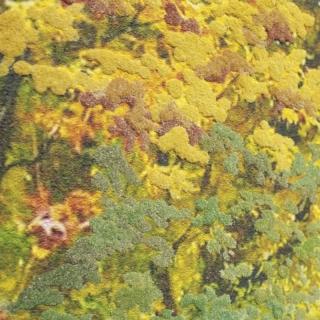 Дизайнерская картина Династия 05-013-05 Осенняя прогулка