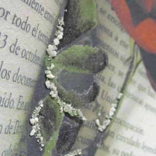 Дизайнерская картина Династия 05-020-07 Лирика