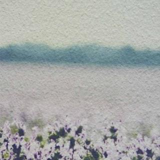 Модульная картина Династия 06-012-01 Цветущее поле