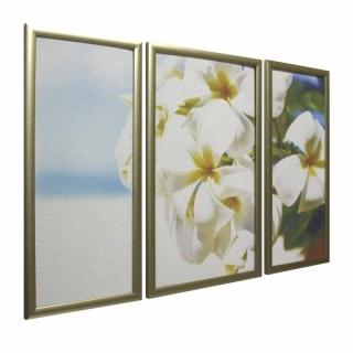 Династия 06-015-01 Солнечные цветы