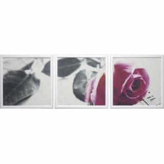 Модульная картина Династия 06-030-02 Нежная роза