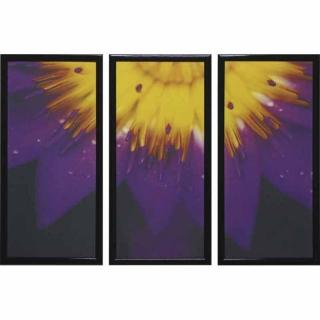 Модульная картина Династия 06-042-03 Яркий цветок