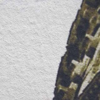 Модульная картина Династия 06-049-03 Колизей