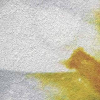 Модульная картина Династия 06-065-04 Ромашка