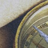 Дизайнерская картина Династия 05-005-03 Остров сокровищ
