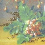 Дизайнерская картина Династия 05-044-08 Плоды шиповника