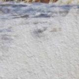 Модульная картина Династия 06-074-05 Морской прибой