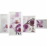 Модульная картина Династия 06-084-06 Нежная орхидея