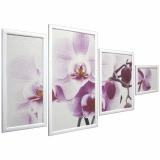 Династия 06-084-06 Нежная орхидея